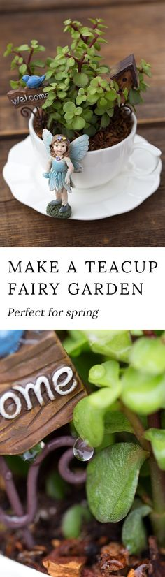Learn how to make a magical teacup fairy garden for your home. Teacup fairy gardens are an adorable Mother's Day gift, are the perfect craft for fairy-themed birthday parties, and look especially sweet displayed in a sunny window.