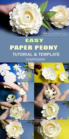 Bowl of Cream peony paper flower tutorial and svg template Paper Peonies, Paper Flowers, Paper Flower Tutorial, Coral Charm Peony, Shapes And Curves, Paper Bouquet, Flower Template, Templates, How To Make Paper