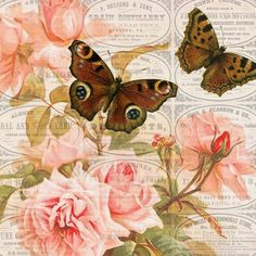 Pennsylvania+advertisements+pink+roses+brown+butterflies+4x4.jpg (1200×1200)