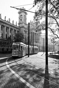 Black and White, photograph, Budapest, The Ethnographic Museum (Néprajzi Múzeum) Hungary, Urbex, Art Nouveau, art print,