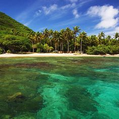 The Top 5 Things to See in Basse-Terre, Guadeloupe