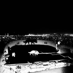 This is @davidmolinagadea from Barcelona taking over the #bjp1854 Instagram for the next week Entre chien et loup. Between dog and wolf. This is a photograph I took last summer on an old Civil war bunker in Barcelona during a birthday celebration of a friend. Im posting images of my first #photobook project White noise black mirror taken during the past 4 years around Europe and beyond. #photobook#bjp1854 #photobookproject #photography #photo #photoshoot #davidmolina #davidmolinagadea…