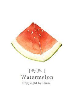 Illu watercolor illustrations