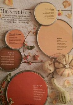What are your fall inspiration colors? Are they oranges, browns, earth tones? Fall Paint Colors, Orange Paint Colors, Behr Paint Colors, Paint Color Palettes, Paint Color Schemes, Interior Paint Colors, Paint Colors For Home, House Colors, Red Color