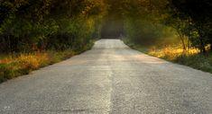 Dr. Pálffy István  Vértesben Csak jött, csak jött, közeledett, maga volt az Ősz, lassú öreges lépéseivel... Több kép Istvántól: www.facebook.com/palffydr/photos_albums Country Roads, Facebook
