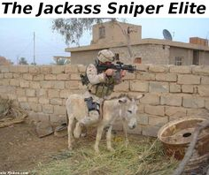 The Jackass Sniper Elite