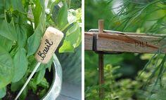 Zápichy a popisky na bylinky | Vysněná zahrada Basil, Herbs, Plants, Diy, Balcony, Bricolage, Herb, Do It Yourself, Balconies