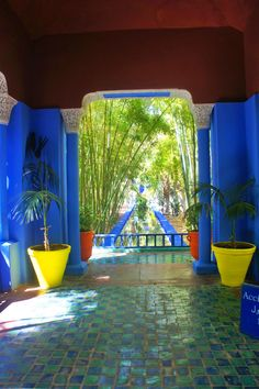 Les Jardin Majorelle, Marrakech, Morocco.  Previous home of Yves Saint Laurent, now a public garden.  So colourful, so beautiful