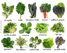 Smoothies | Rebel Dietitian, Dana McDonald, RD. - Leafy Greens Chart
