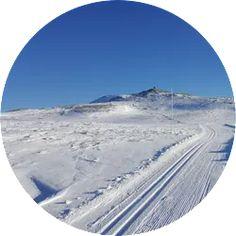 En herlig fjelltur i et storslått fjellterreng med Nystølvarden på 1296 moh som høyeste topp. Sanderstølen ligger på 840 moh. Følg løypenettet fra Sanderstølen som går sydover i 5,2 km, så kommer du til Hølstølen og inngangen til fjellområdet Klikk på bildet for å se full beskrivelse av skituren! Kos, Outdoor, Outdoors, Outdoor Games, The Great Outdoors, Aries, Blackbird