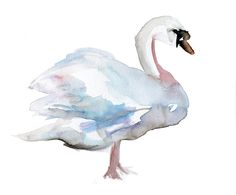 Swan Watercolor Painting. Original painting on cardboard 8 x 10 inches. Zen swan. Romantic Animal Painting. on Etsy, $63.04