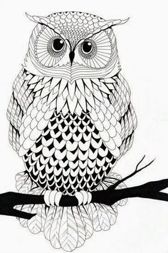 Owl Free Printable Coloring Pages –> If you're looking for the top coloring books and writing utensils including gel pens, […] Make your world more colorful with free printable coloring pages from italks. Our free coloring pages for adults and kids. Free Printable Coloring Pages, Coloring Book Pages, Black And White Owl, Owl Art, Doodle Art, Owl Doodle, Line Art, Art Drawings, Drawing Owls