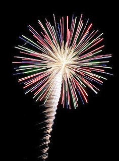 (Open/w Drake) Soooooo someone left a warehouse of fire works open, nah I actually broke in and took a lot of fireworks and I'm now seeing them off anywhere I want!