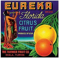 Eureka Brand, American Indian, Original Vintage Florida Orange and grape fruit crate label or Citrus Box label, framed