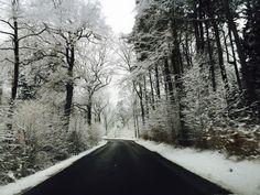 Winterwonderland ❄️