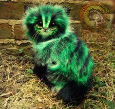 SOLD Pickles!  Handmade Poseable Fantasy Cat! by Wood-Splitter-Lee