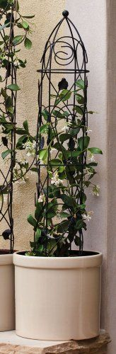 """Black Leaves Dome Trellis - Medium by Outdoor Decor. Save 44 Off!. $22.25. Great for yourself or as a gift!. Made of metal.. 6"""" L x 6"""" W x 36"""" H. From the Trellis Collection.. Perfect for every garden!. Perfect for enthusiasts looking to spice things up, this trellis is a nice addition to almost any garden. Place this decorative trellis anywhere in your garden just for looks or plant a rose bush underneath and watch the rose vines climb through the intricate metal working! Purchase one…"""