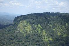 Survol du parc de la Lopé, Gabon