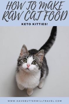 Raw cat food recipe. A recipe made using real food, easily found in the supermarket, designed for optimal health for your cats. #rawcatfood #rawcatfoodrecipe #homemadecatfood Homemade Cat Food, Live Chicken, Allergies, Chicken Livers, Raw Food Recipes, Food To Make, Dog Cat, Butter, Keto