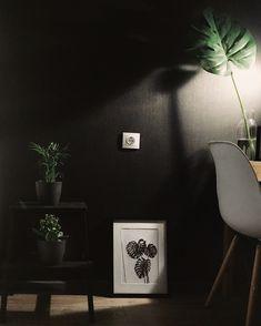Scandinavian style black wall kitchen