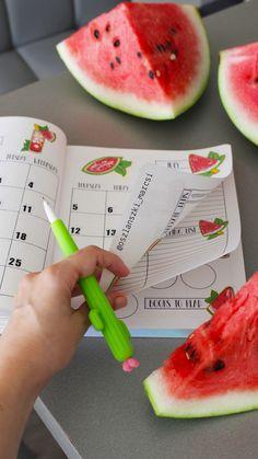 Watermelon Bullet Journal planner stickers - July 2018