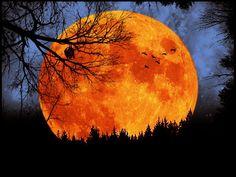 Autumn Equinox / Harvest Moon 2012 ~