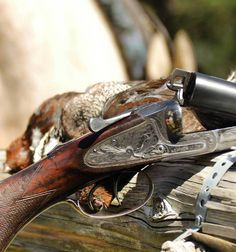 This is the official page of Gentleman Bobwhite, dedicated to the outdoor lifestyle and the pleasures of pursuing the gentleman of game birds: the bobwhite quail. Double Barrel, Sports Pictures, Gentleman, Hunting, Game Birds, Shotguns, Firearms, Rifles, Fishing