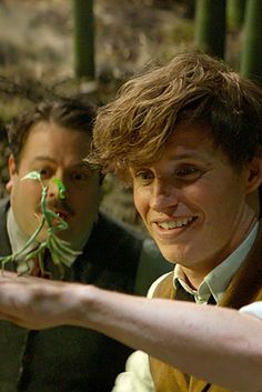 Meet All the Incredible Creatures of Fantastic Beasts and Where to Find Them