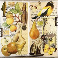 ideas for a level art sketchbook inspiration fashion design Kunstjournal Inspiration, Sketchbook Inspiration, Kunst Inspo, Art Inspo, A Level Art Sketchbook, Art Alevel, Nature Collage, Collage Drawing, Art Folder