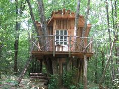 Cabin perched in the heart of a forest. - Treehouses for Rent in Saint-Front-sur-Nizonne, Aquitaine Limousin Poitou-Charentes, France