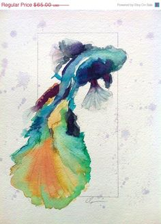 Colorful+Betta+Fish+Watercolor+by+Clair+by+ClairHartmannFineArt,+$32.50