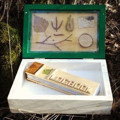Cool geocache with a cool logbook.  #IBGCp