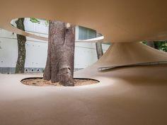 ryue nishizawa places fukita pavilion amongst the trees