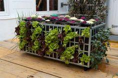 Air Garden: Jardineras verticales