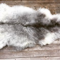 We have s nice collection of grey sheepskins in store now. Check it out! 😁👍🏻
