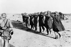 Tobruk 1941 - 1942: British prisoners, captured by the Germans during the siege of Tobruk are escorted away with their hands on their heads.
