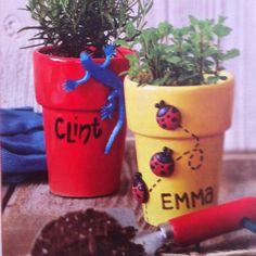 Cute flower pots.