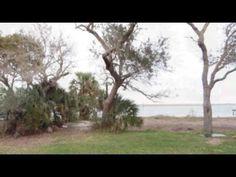 Land For Sale: 16291 Waterville Road,  Jacksonville, FL 32226 | CENTURY 21 - http://jacksonvilleflrealestate.co/jax/land-for-sale-16291-waterville-road-jacksonville-fl-32226-century-21/