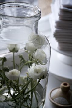 Ranonkels in een hoge vaas. Ranunkler i en høj vase. Ranunculus in a tall… Flowers In Jars, Home Flowers, White Ranunculus, Anemones, Purple Home, Ivy House, Deco Floral, Bottles And Jars, Home Deco