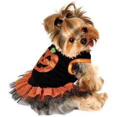 Pumpkin Dog Tutu Dress