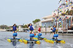 Waterbiking in Tampa Bay - Five Reasons to visit Tampa Bay #Tampa #TampaBay #WaterBike #Watercycling #WaterSports #Florida #Travel #Blog #TravelBlog