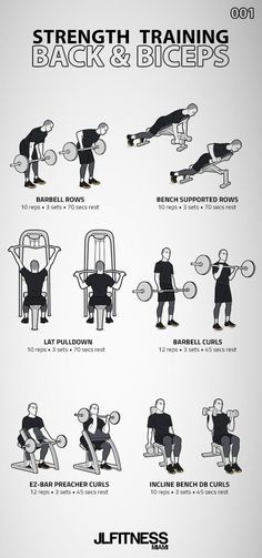 Strength Training Back & Biceps 6 exercises: 3 back exercises and 3 biceps exercise. Mens Bicep Workout, Big Biceps Workout, Back Workout Men, Back And Bicep Workout, Gym Workouts For Men, Workout Routine For Men, Weight Training Workouts, Gym Workout Tips, Back And Biceps