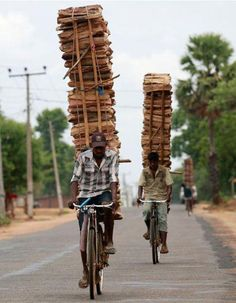 Technique to carry big load on a bicycle... |.. New Images 1'st