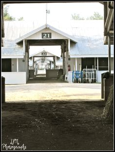 Another set of stables that I would like to visit:  the stables at Keeneland