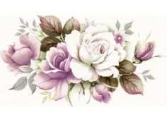 Pink White Rose Flowers Item # 16371