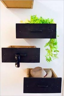turn drawers into displays and plant holders