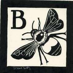 B is for Bee, Linocut by Stephen Duffy | Artfinder