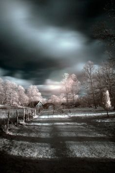 The Last House on the Road (Infrared), hand-tinted by Fredrik Silverglimth