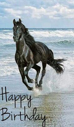 Happy Birthday with Black Stallion Photo edit credit; Monyca Dennis  #HappyBirthday #BlackStallion #Beach #Birthday