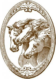 Vintage Horse Illustrations= I had this years ago- I got it from an antique shop- it was framed in barn wood- I lost track of it and this means everything to me-